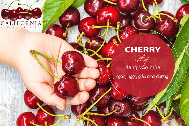 Mùa cherry mỹ vào tháng mấy