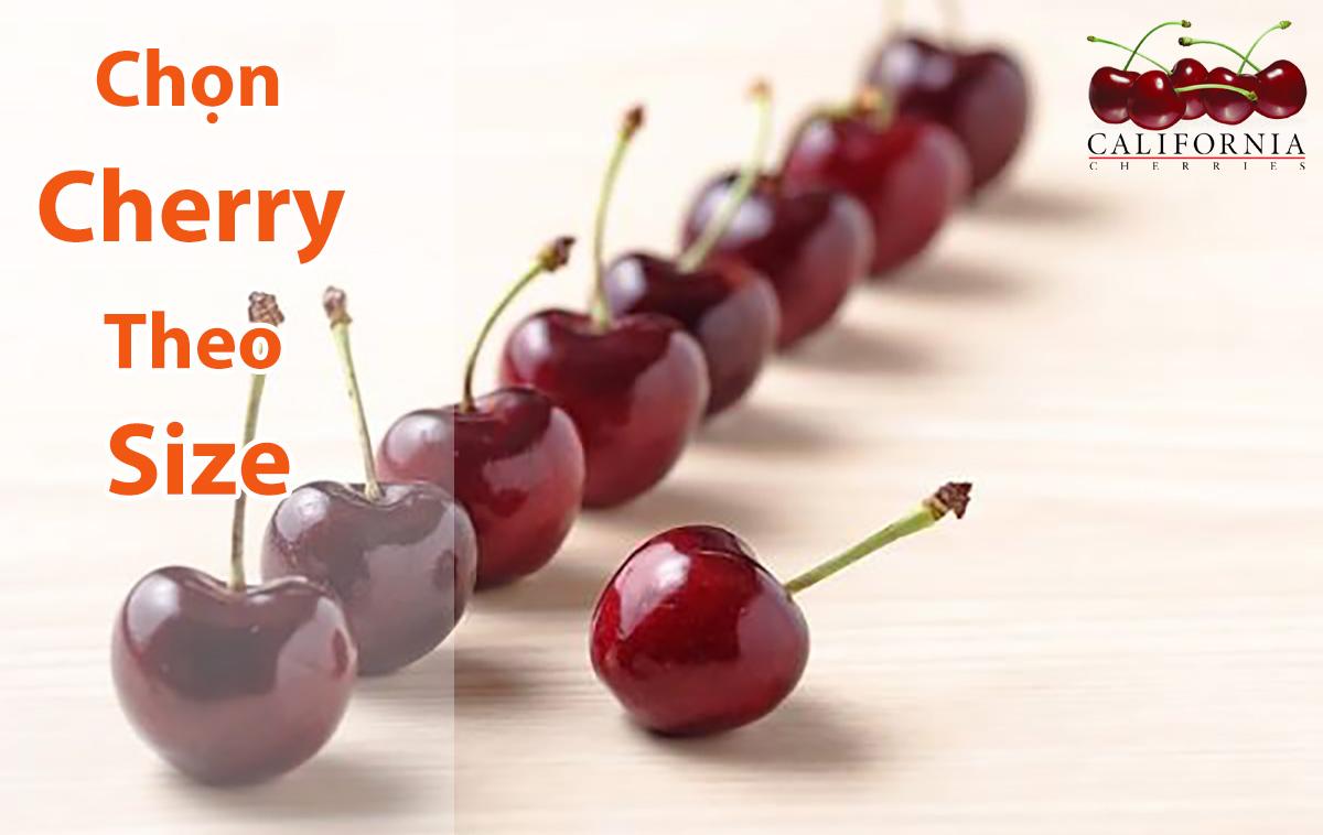 Hướng dẫn nhận biết các loại size cherry