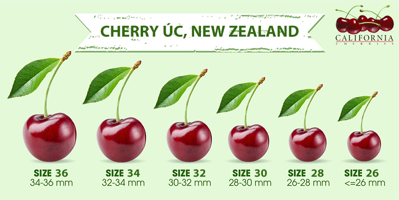 các size cherry
