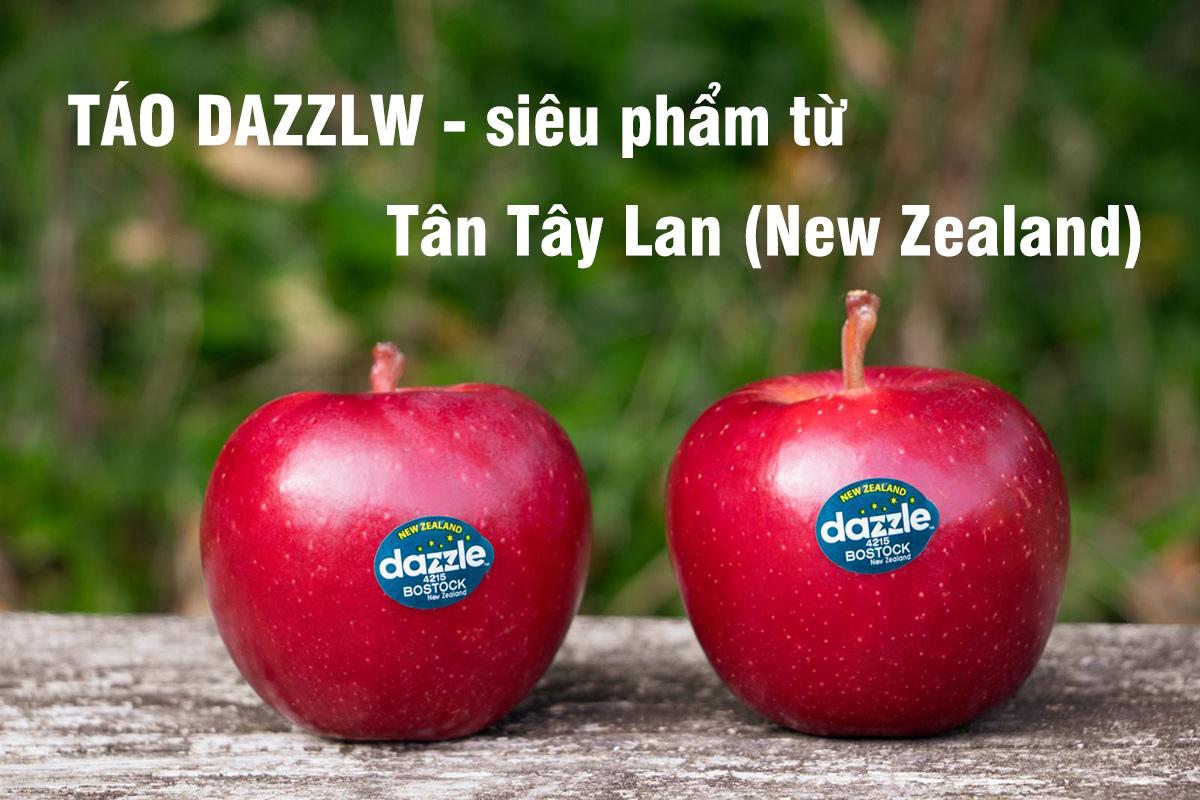 Táo Dazzle – Siêu phẩm từ Tân Tây Lan có gì đặc biệt?