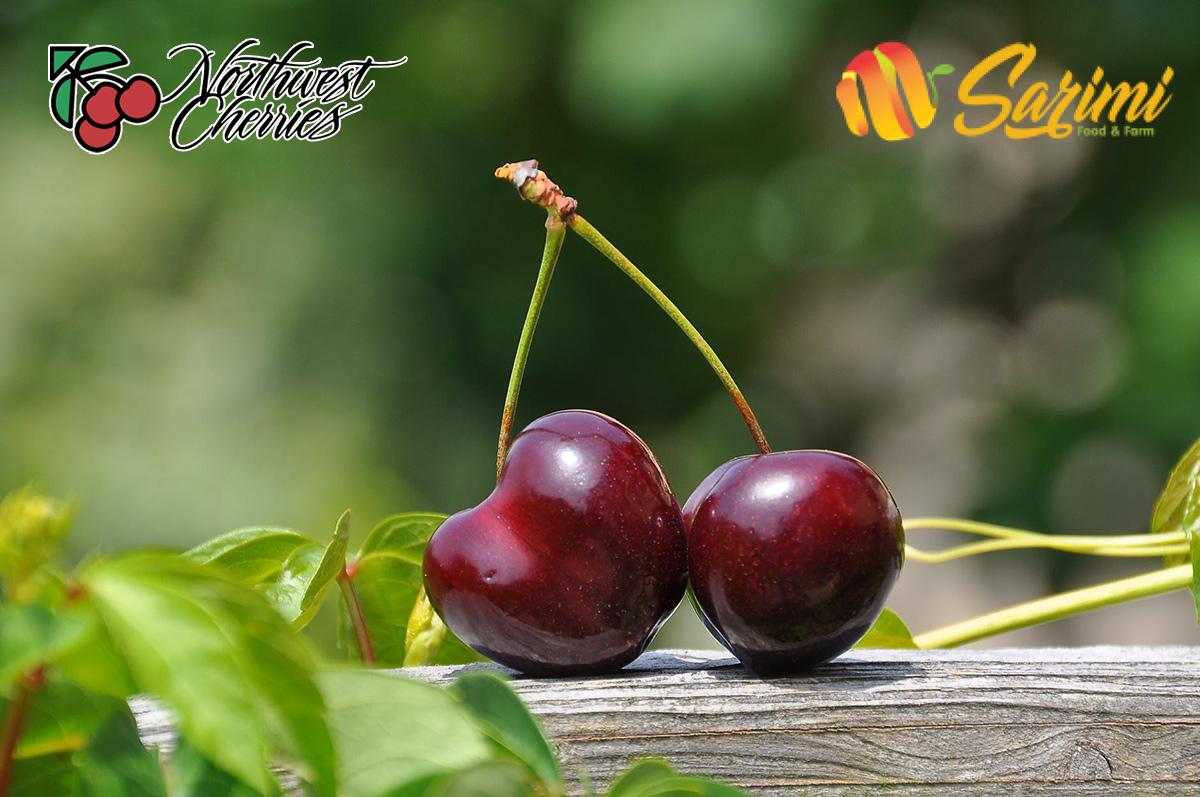 các loại cherry